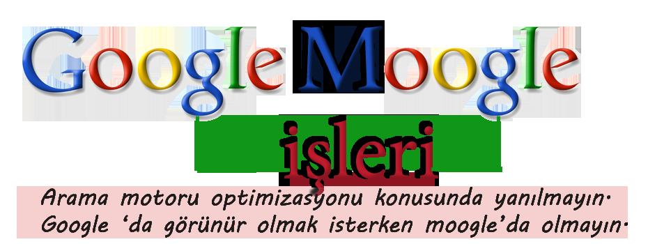 google-moogle-optimizasyonu-2
